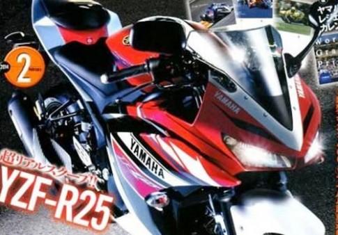 Lo anh Yamaha R25 phien ban san xuat