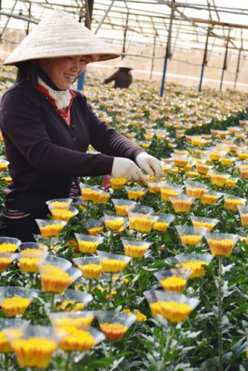 Ba lang hoa noi tieng Da Lat
