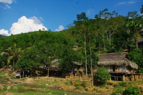 Ban Thai den biet lap trong rung truc o Thanh Hoa