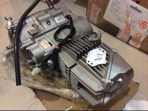 Cục máy Daytona Anima 4val 190cc 60 triệu cho dân chơi Việt