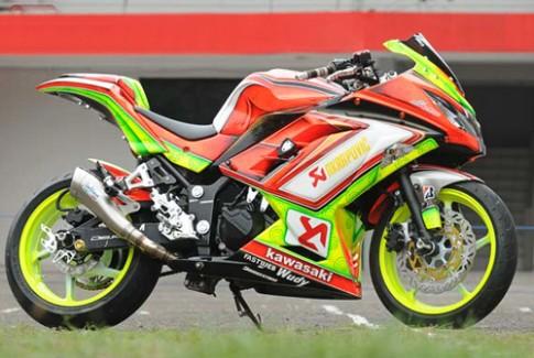 Kawasaki Ninja 250R ve Airbrush