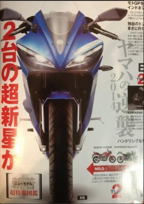 Lo hinh anh cua Yamaha YZF-R250