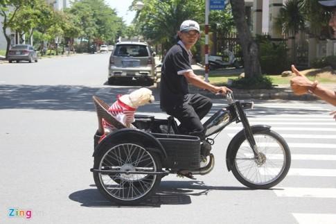 Mô bi lết chế 3 bánh sidecar độc đáo tại Sài Gòn