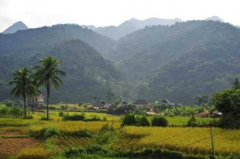 Mua vang tren dinh Pu Luong xu Thanh