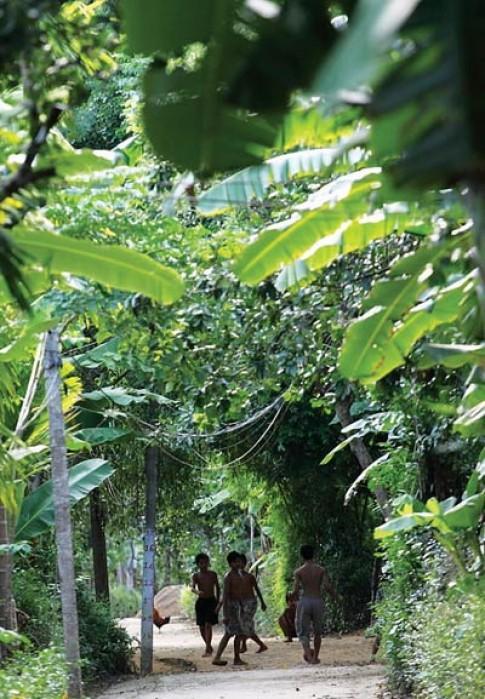 Ngoi lang co trong long thanh pho Hue