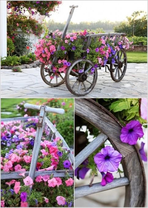 Nhung chiec xe hoa an tuong trong vuon