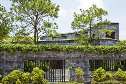Những ngôi nhà có vườn len lỏi bên trong