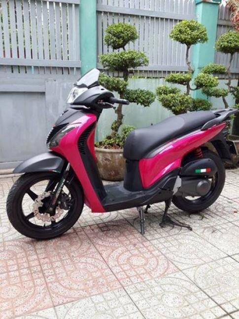 SH 29999 - doa hong khoe sac