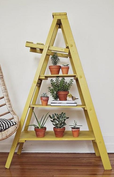 Sử dụng thang để trang trí trong nhà