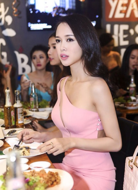 Vu Ngoc Anh, Linh Chi thich vay ton vong mot