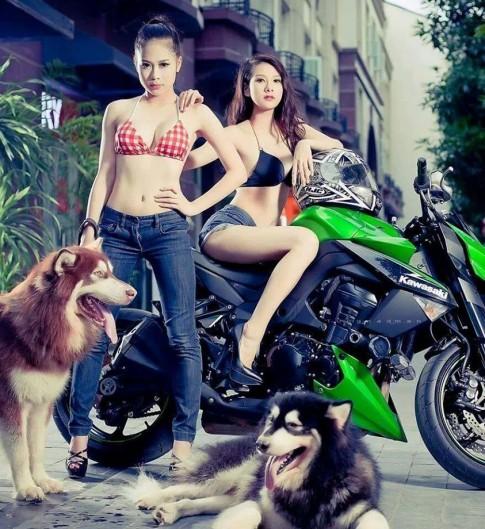 Z1000 nếu buộc phải lựa chọn giữa người và chó...