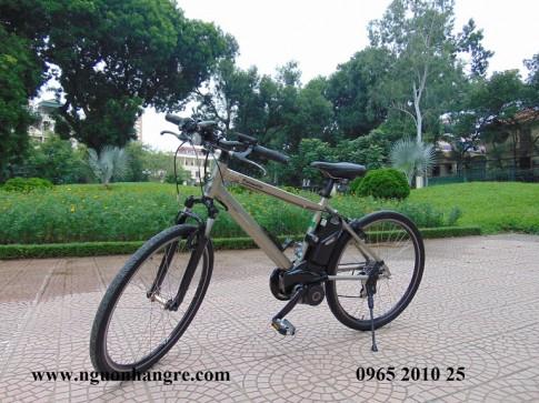 Nguồn xe đạp điện Nhật nội địa