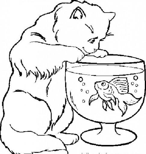 Tranh tô màu 'Chú mèo ngắm cá'