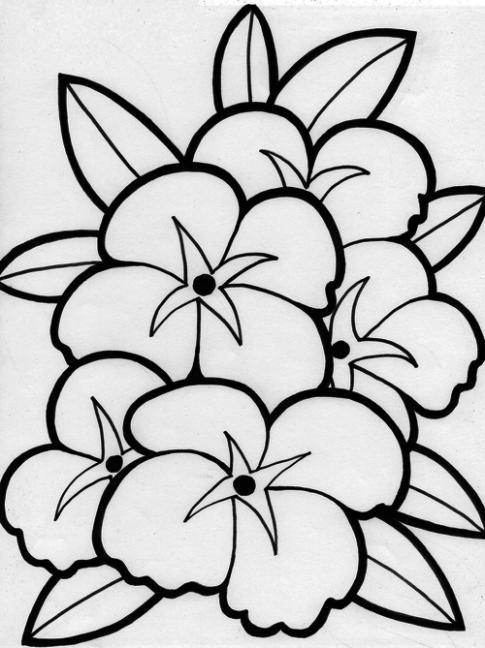 Tranh tô màu 'Một khóm hoa'
