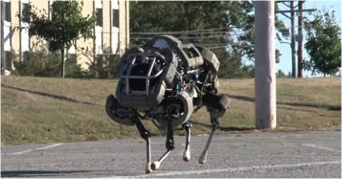 Cac loai robot lay cam hung tu dong vat