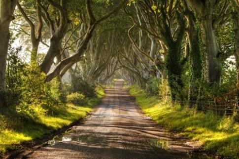 Chuyen ke thu vi quanh hang soi than tien o Ireland