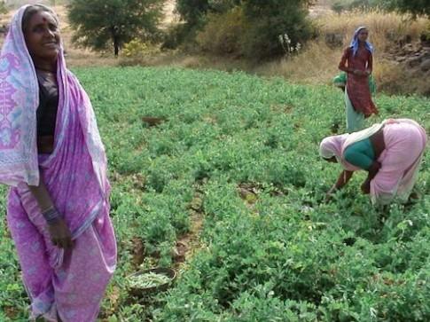 Ngôi làng 'lột xác' trở nên giàu có ở Ấn Độ