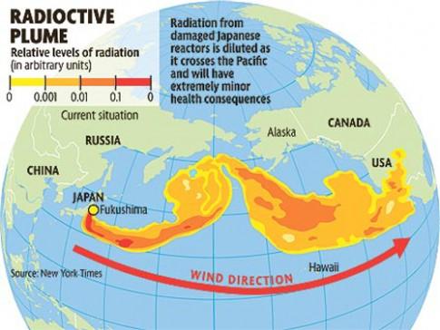 Phong xa Fukushima den bo bien Bac My