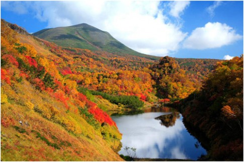 Trai nghiem ve dep Hokkaido mua la do