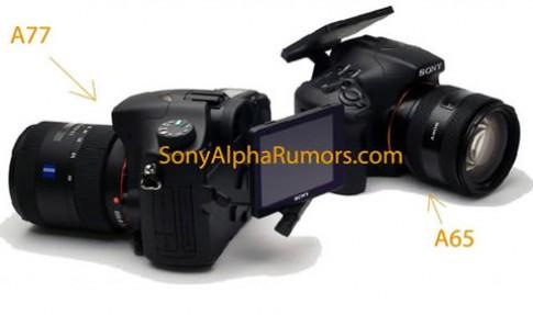 Anh Sony Alpha A77 va A65 xuat hien