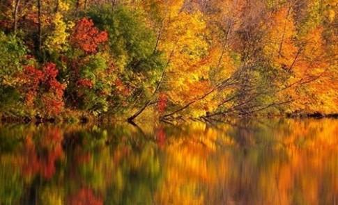 Chùm ảnh tuyệt đẹp về sự thay đổi ngoạn mục thiên nhiên mùa thu (P.2)