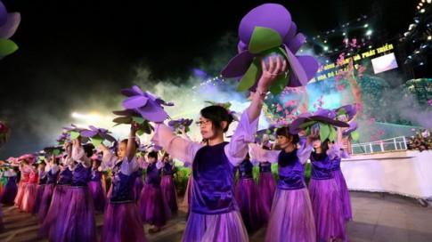 Đà Lạt rực rỡ đêm khai mạc Festival hoa 2013