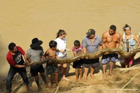 Giai cuu tran Anaconda khong lo lac trong khu nghi duong
