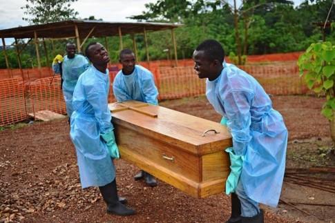 Phat hien moi ve nguon goc phat tan virus Ebola