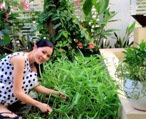 Rau xanh xen giua vuon hoa o nha Quyen Linh