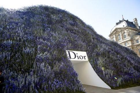 Mua hoa oai huong ngap tran san dien Dior