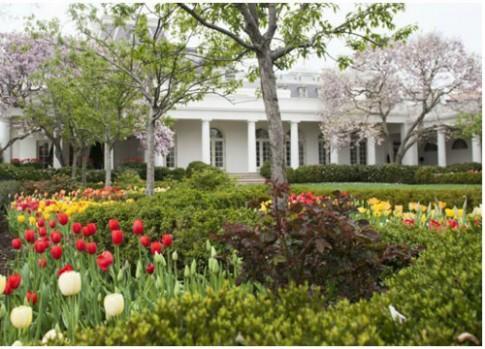 Ngắm vườn hồng - biểu tượng một thời của vợ chồng Tổng thống Mỹ