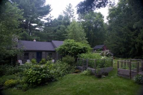 Vườn nhà 2000m2 trồng đủ loài cây thảo mộc