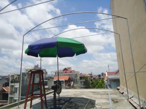 Trai Hải Phòng chi 4 triệu làm nhà lưới trồng rau sân thượng