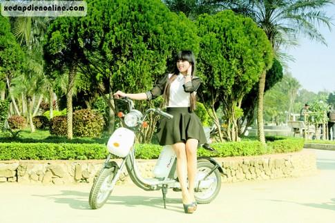 Xe đạp điện Nijia 2016 - nhập khẩu nguyên chiếc