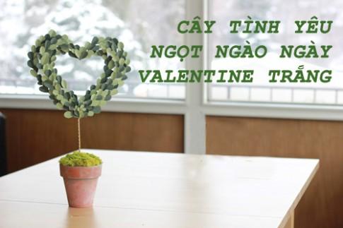 Cay tinh yeu ngot ngao cho Valentine trang