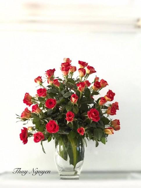 """Những bình hồng trăm bông """"nhìn là yêu"""" của mẹ U40"""