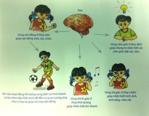 Xử trí khi trẻ co giật động kinh