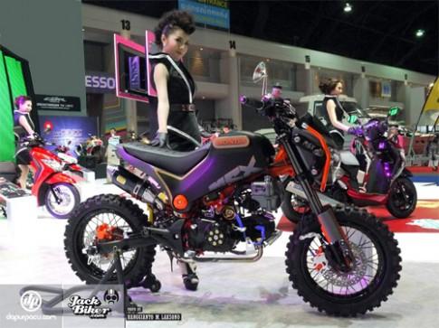 Honda MSX - phong cách cào cào phố