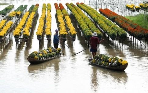 Đồng Tháp khai thác bến tàu du lịch trên sông Sa Đéc