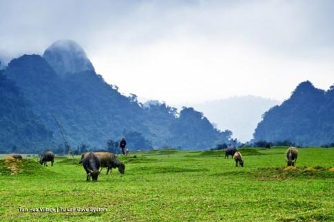 Canh dep Viet trong bom tan Kong: Skull Island