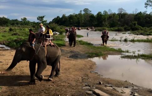 Đại sứ các nước cưỡi voi ở Buôn Đôn