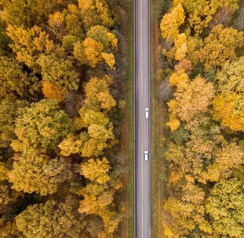 Mùa thu vàng ở Lithuania