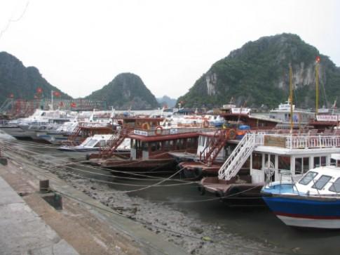 Quang Ninh lap duong day nong ho tro du khach trong mua bao