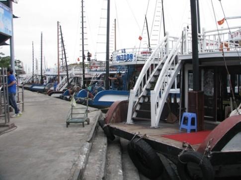 Xử phạt 4 tàu du lịch vi phạm trên vịnh Hạ Long