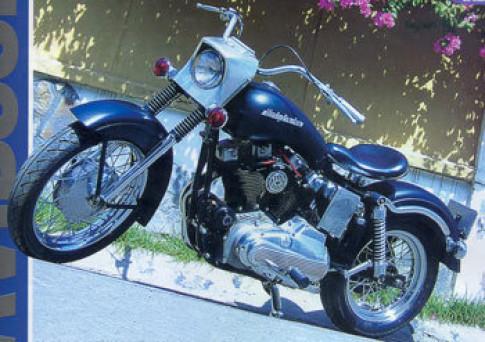 Hàng độc Harley '9 ngựa'
