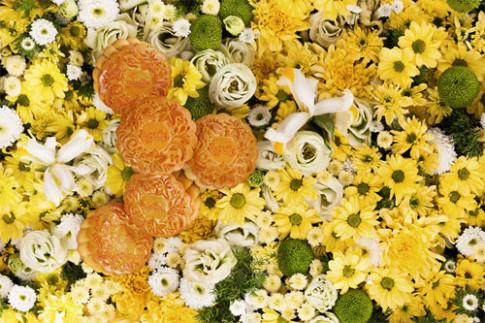 Chi em cong so me met voi trao luu banh trung thu hinh hoa.