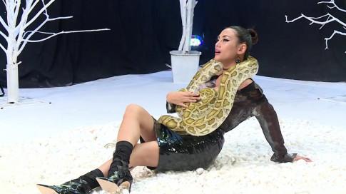 VNTM All Stars: Dan thi sinh cung dau cung co gao khoc bai phuc do li cua Hoang Yen