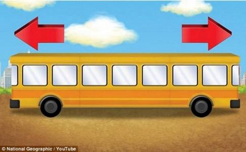 Xe đang chạy theo hướng nào? - 80% trẻ trả lời đúng trong 3 giây, người lớn thì không