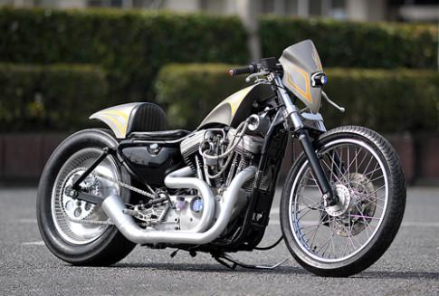 Harley Davidson XL 1200 - quai vat doc nhan