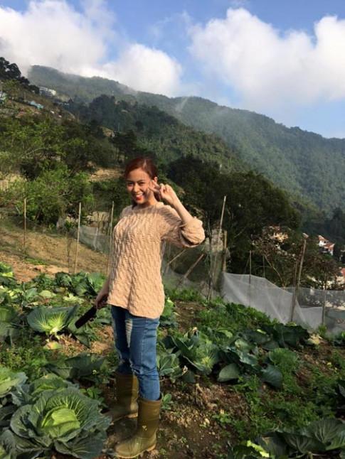 Vườn rau đầu xuân của gia đình Hoàng Thùy Linh
